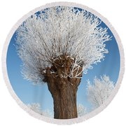A Frosted Willow On A Very Cold And Bright Winter Day Round Beach Towel