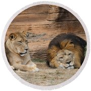 African Lion Couple 3 Round Beach Towel
