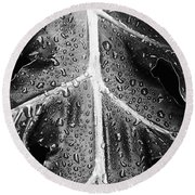 After The Rain - Bw Round Beach Towel
