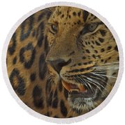 Amur Leopard 1 Round Beach Towel