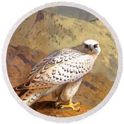 Greenland Falcon Round Beach Towel
