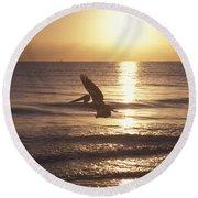 Australian Pelican Glides At Sunrise Round Beach Towel