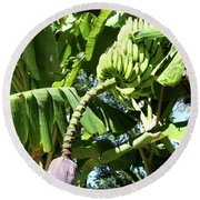 Banana Tree Round Beach Towel