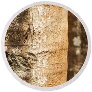 Bark Of A Tree Round Beach Towel