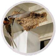 Barn Swallow Round Beach Towel by Scott Linstead