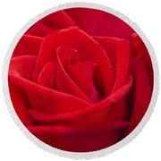 Beautiful Red Rose Close Up Shoot Round Beach Towel