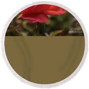 Beautiful Rose Round Beach Towel