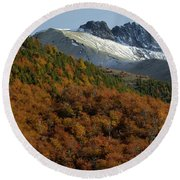 Beech Forest, Chile Round Beach Towel