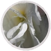 Begonia Named Nonstop Apple Blossom Round Beach Towel