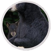 Black Bear With Cub Round Beach Towel