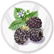 Artz Vitamins Series The Blackberries Round Beach Towel