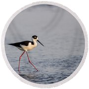 Blacknecked Stilt Round Beach Towel