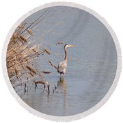 Blue Heron In The Wild Round Beach Towel