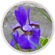 Blue Iris Round Beach Towel