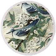Blue Jays And Blossoms Round Beach Towel