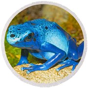 Blue Poison Dart Frog Round Beach Towel