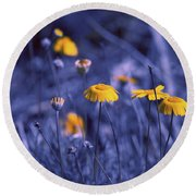 Bluegrass Round Beach Towel