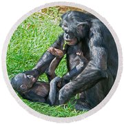Bonobo Adult And Baby Round Beach Towel