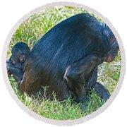 Bonobo Mother And Baby Round Beach Towel