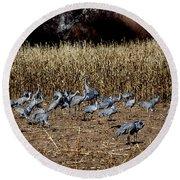 Bosque Del Apache New Mexico-sand Cranes V3 Round Beach Towel