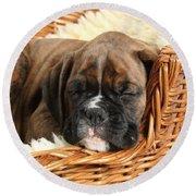 Boxer Puppy Round Beach Towel