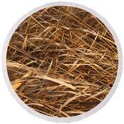 Brown Reeds Round Beach Towel