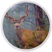 Buck Deer In A Mystical Foggy Forest Scene Round Beach Towel