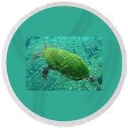 Busch Turtle  Round Beach Towel