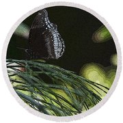 Butterfly Collection Round Beach Towel