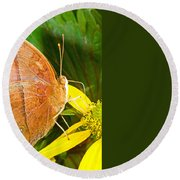 Butterfly Mimicry Round Beach Towel