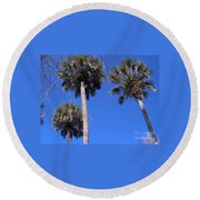 Cabbage Palms Round Beach Towel