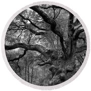 California Black Oak Tree Round Beach Towel