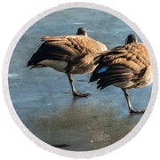 Canada Geese At Rest Round Beach Towel