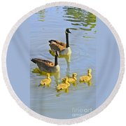 Canadian Goose Family Round Beach Towel