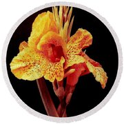 Canna Lilly In New Orleans Round Beach Towel