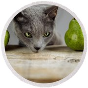 Cat And Pears Round Beach Towel