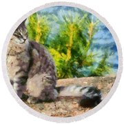 Cat By The Seaside Round Beach Towel