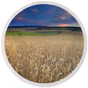 Cereal Fields At Sunset Round Beach Towel