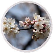 Cherry Blossom 3 Round Beach Towel