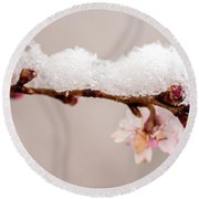 Cherryblossom With Snow Round Beach Towel