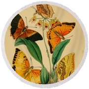 Chinese Butterflies 1847 Round Beach Towel