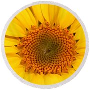 Chipmunk's Peredovik Sunflower Round Beach Towel