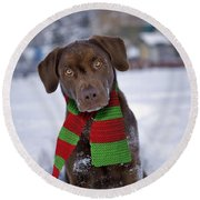 Chocolate Labrador Retriever Round Beach Towel