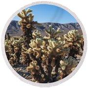 Cholla Cactus Round Beach Towel