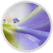 Close Up Iris Round Beach Towel
