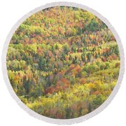 Colorful Autumn Forest In Mount Blue State Park Weld Maine Round Beach Towel