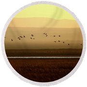 Common Cranes At Gallocanta Lagoon Round Beach Towel