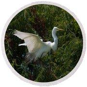 Common Egret Round Beach Towel