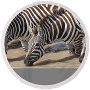 Common Zebras Drinking Water Round Beach Towel