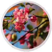 Crab Apple Round Beach Towel